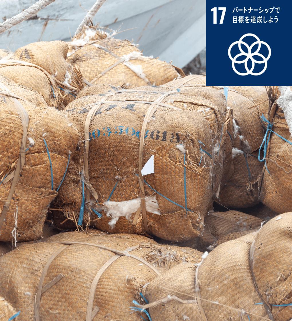 持続可能な開発のための実施⼿段を強化し、グローバル・パートナーシップを活性化する